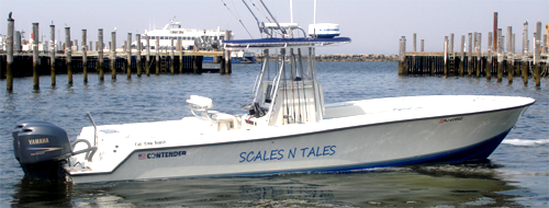 Scales n tales fishing nj in off shore charter boat for Fishing charters nj